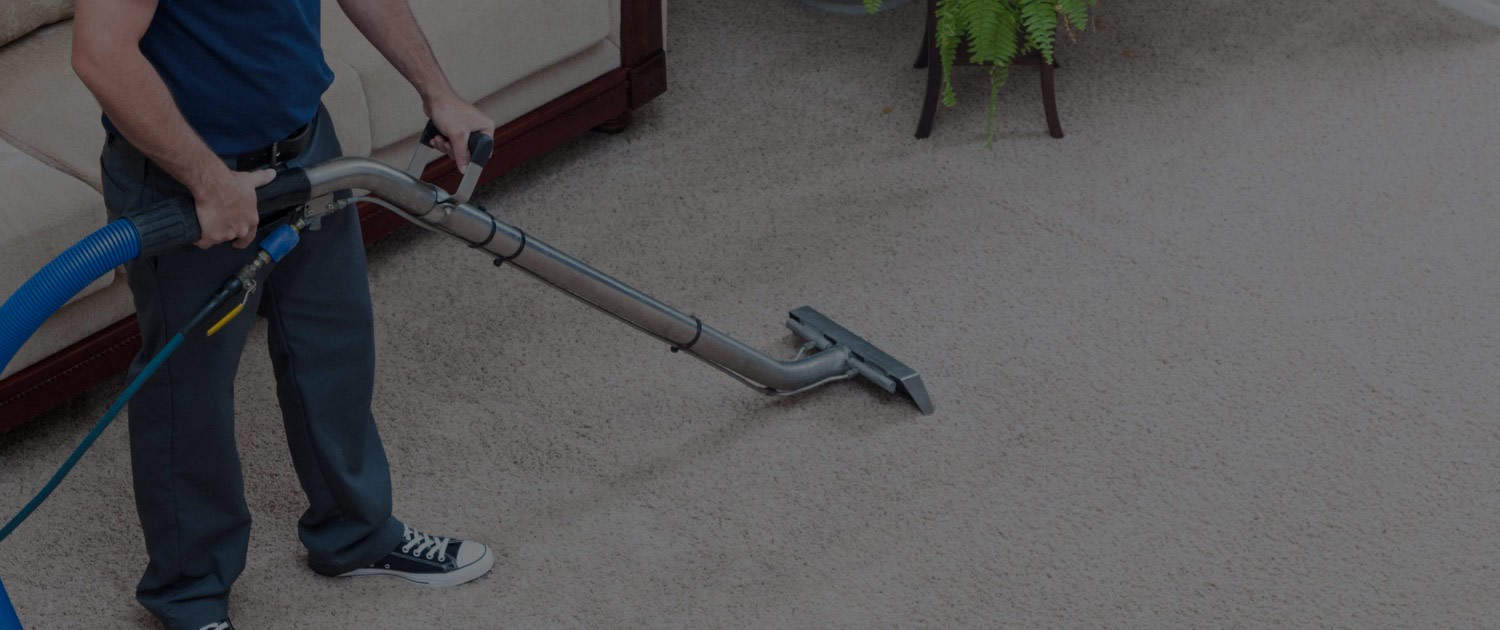 Penguin Cleaning Carpet Cleaning In Warrnambool